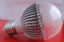 LED普光 HJ-P6131-3w 输入电压兼容AC110V / 220V