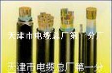 市内通讯电缆 填充式通讯电缆 铠装通信电缆