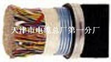 50对 单层钢带铠装通讯电缆 HYAT53 HYA53 50*2*0.5