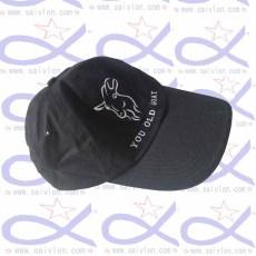 CAP019