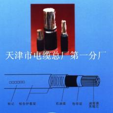 WDZ-HYAT53鎧裝音頻電纜