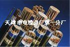 驱动扬声器电缆 HAV 2X32X0.15