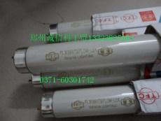 臺灣TFC鮮肉燈管