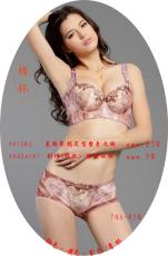 9815R3 美胸聚拢定型塑身文胸 修正型文胸 女式内衣套装 女式塑身内衣