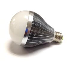 A55系列12W球泡燈JC-A551001-LED12