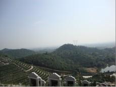 长沙公墓山
