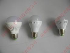 LED灯球泡灯 塑料外壳7W 10元