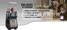 英思科BM25多種復合氣體檢測儀