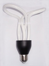 CFL energy saving light bulb