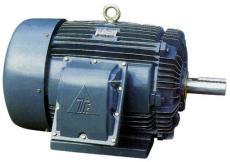 AEEF2成都东元变频电机TECO-MOTOR AEVF