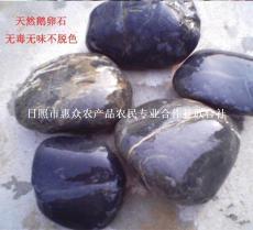 厂家直销纯天然鹅卵石 求购鹅卵石 鹅卵石的价格和图片 鹅卵石的作用
