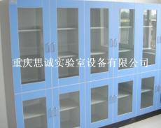 重庆实验室家具 南岸样品柜