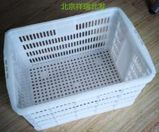 北京白色塑料筐 運輸筐