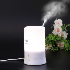 Vividay 100ml Aromatherapy Essential Oil Diffuser Ultrasonic Aroma Humidifier -Warm White