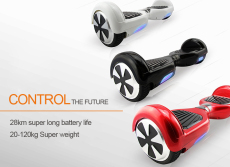 Swing Car with Two Motor Power 500W and Max Speed 10km/H