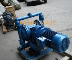 DBY electric diaphragm pump 10 direct manufacturers welcome wholesale
