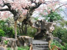 生态园仿真假树