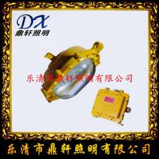 生產廠家FL-JW5281A 輕便裝卸燈12W探照燈