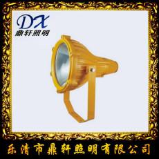 FL-JW7310微型防爆電筒電量顯示佩戴式照明