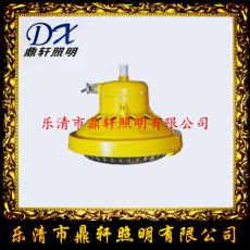 鼎軒照明YJ1010B固態微型強光防爆電筒質保