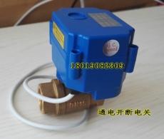 CWX-15Q/N微型电动球阀