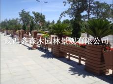 陕西塑木(木塑)地板、陕西木塑栈道护栏
