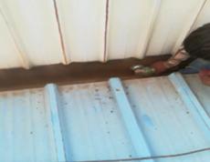 钢棚水沟防水施工