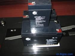 VISION(威神)电池CP1250