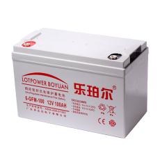 LOTPOWER蓄电池12V100AH