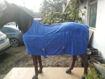 HORSE301 horse rug