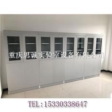定制各種鋼制實驗室家具全木藥品柜文件柜