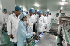 星之辉顾问辅导制药企业6S-TPM管理咨询项目