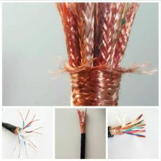 计算机电缆DJVVP22厂家