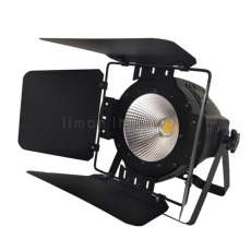 100W COB LED Par Light RGBW