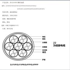 RS-485-22 铠装数据电缆直销