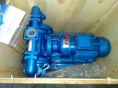 DBY-40F襯氟電動隔膜泵