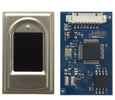 Capacitive fingerprint identification module