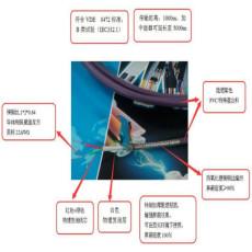 耐高溫計算機電纜ZRDJFP2V-12*2*1.5