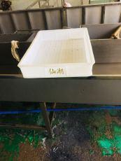 河南焦作塑料托盤,鄭州塑料托盤